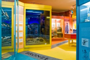 Dudley Discovers, Fun Weekend Activities @ North Lincolnshire Museum | England | United Kingdom