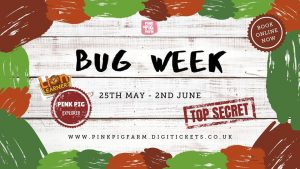 Bug Week @ Pink Pig Farm
