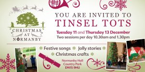 Sold Out - Tinsel Tots @ Normanby Hall