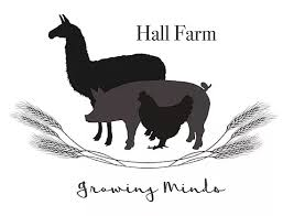 Summer Holidays Farm Club @ Hall Farm