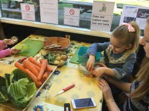 Sold Out - Peter Rabbit Activity Session @ Normanby Hall