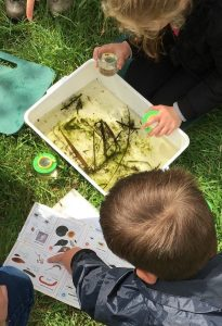 Wild Play - Pond Dipping @ Far Ings Visitor Centre