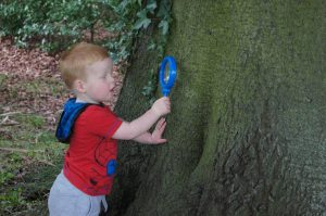 Woodland Detectives Discovery Workshop @ Normanby Hall