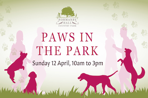 Paws in the Park Challenge @ Normanby Hall