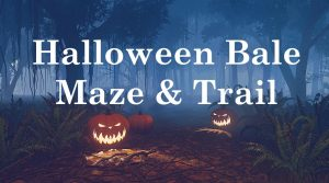 Halloween Bale Trail & Maze @ Waters' Edge Visitor Centre